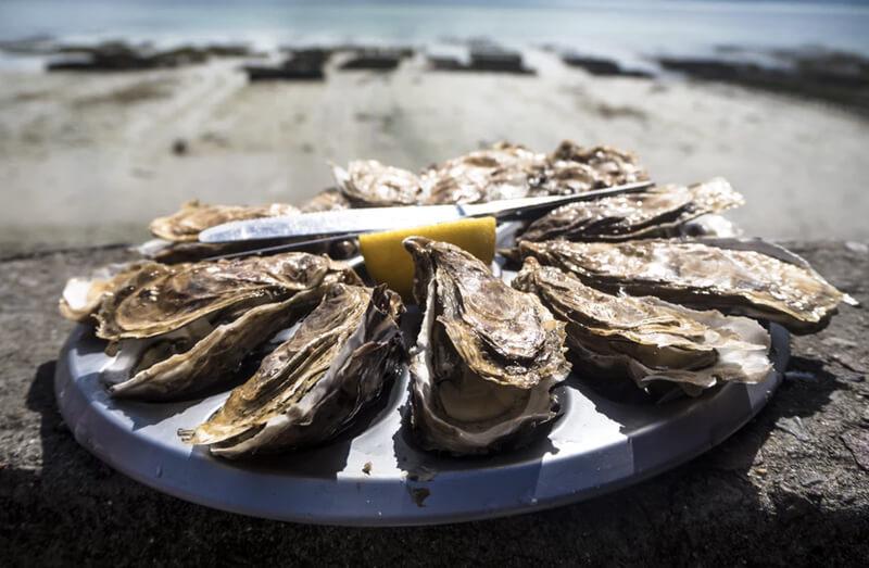 オナ禁時には食事で亜鉛を摂取が効果的!自宅で出来る牡蠣のアヒージョ